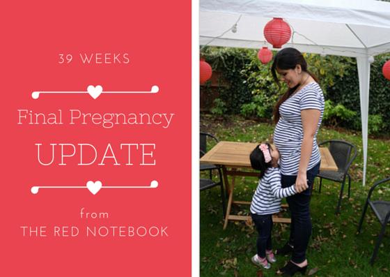 pregancy blog the red notebook